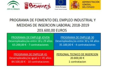 PROGRAMA DE FOMENTO DEL EMPLEO INDUSTRIAL Y MEDIDAS DE INSERCION LABORAL 2018-2019